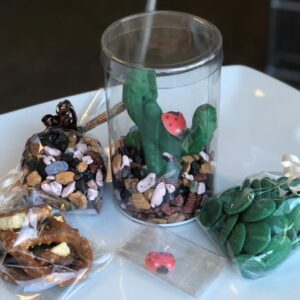 Edible Chocolate Terrarium Kit