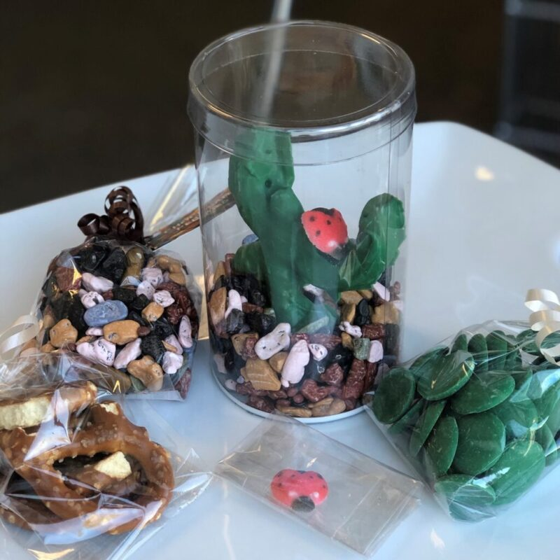 Edible Chocolate Terrarium Kit